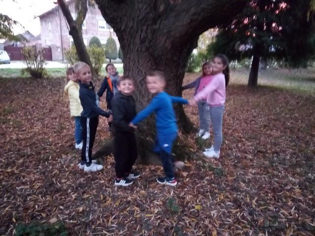 Program predškole u Potočiću